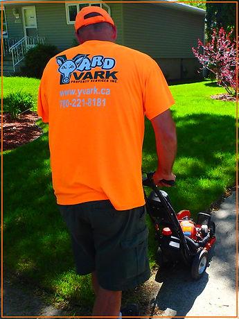 yardvark lawn care