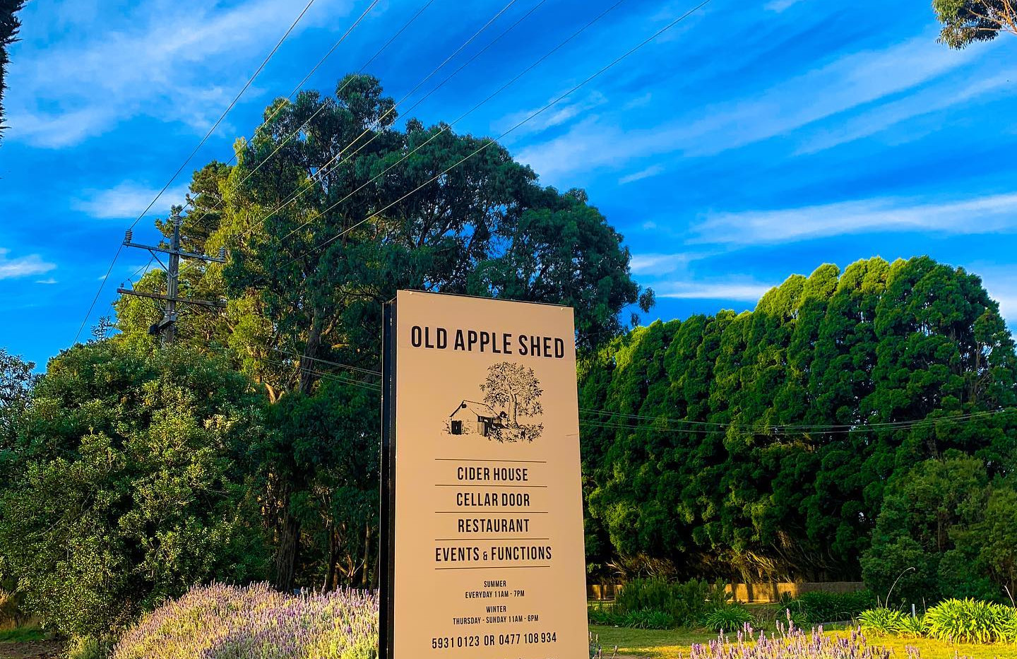 Welcome to Old Apple Shed