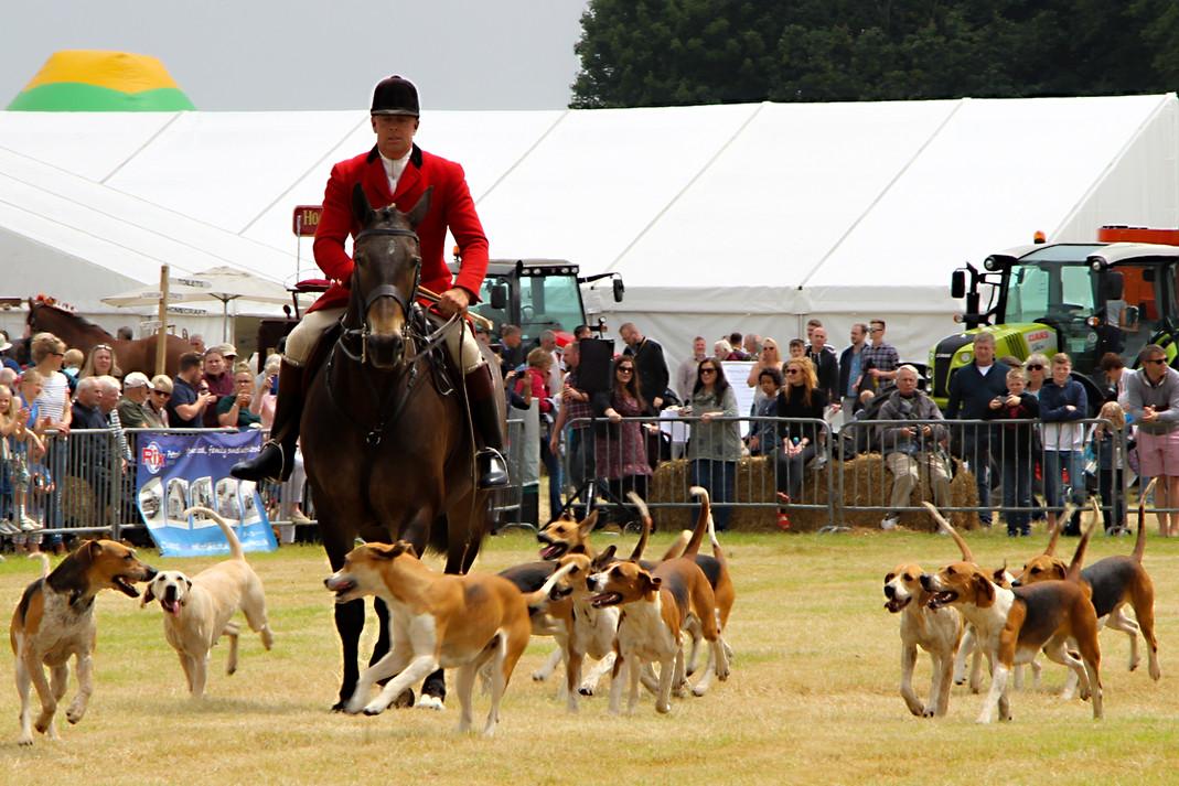 Warwickshire Hunt