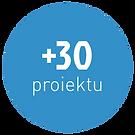 30 proiektu.png