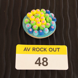 AV ROCK OUT 48