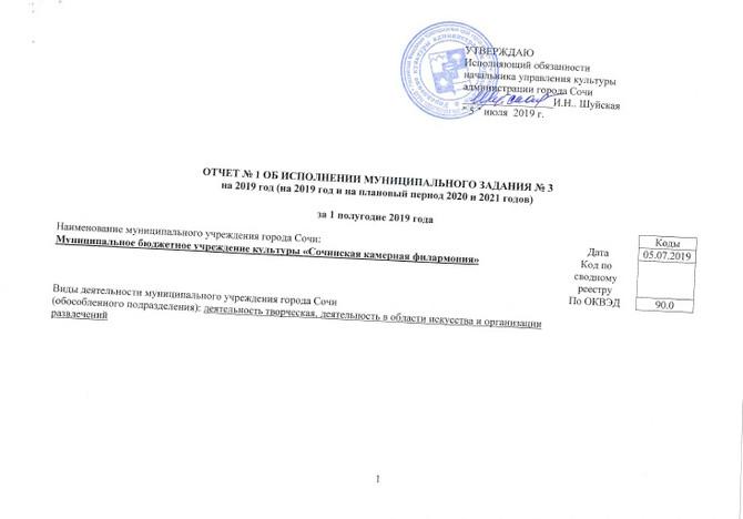 Отчет МЗ I полугодие 2019