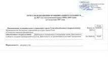 Отчет МЗ за 1 полугодие 2017
