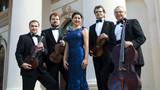 Сочинскую камерную филармонию презентуют на Grand Opening