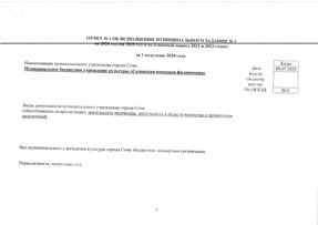 Отчет МЗ за I полугодие 2020 года