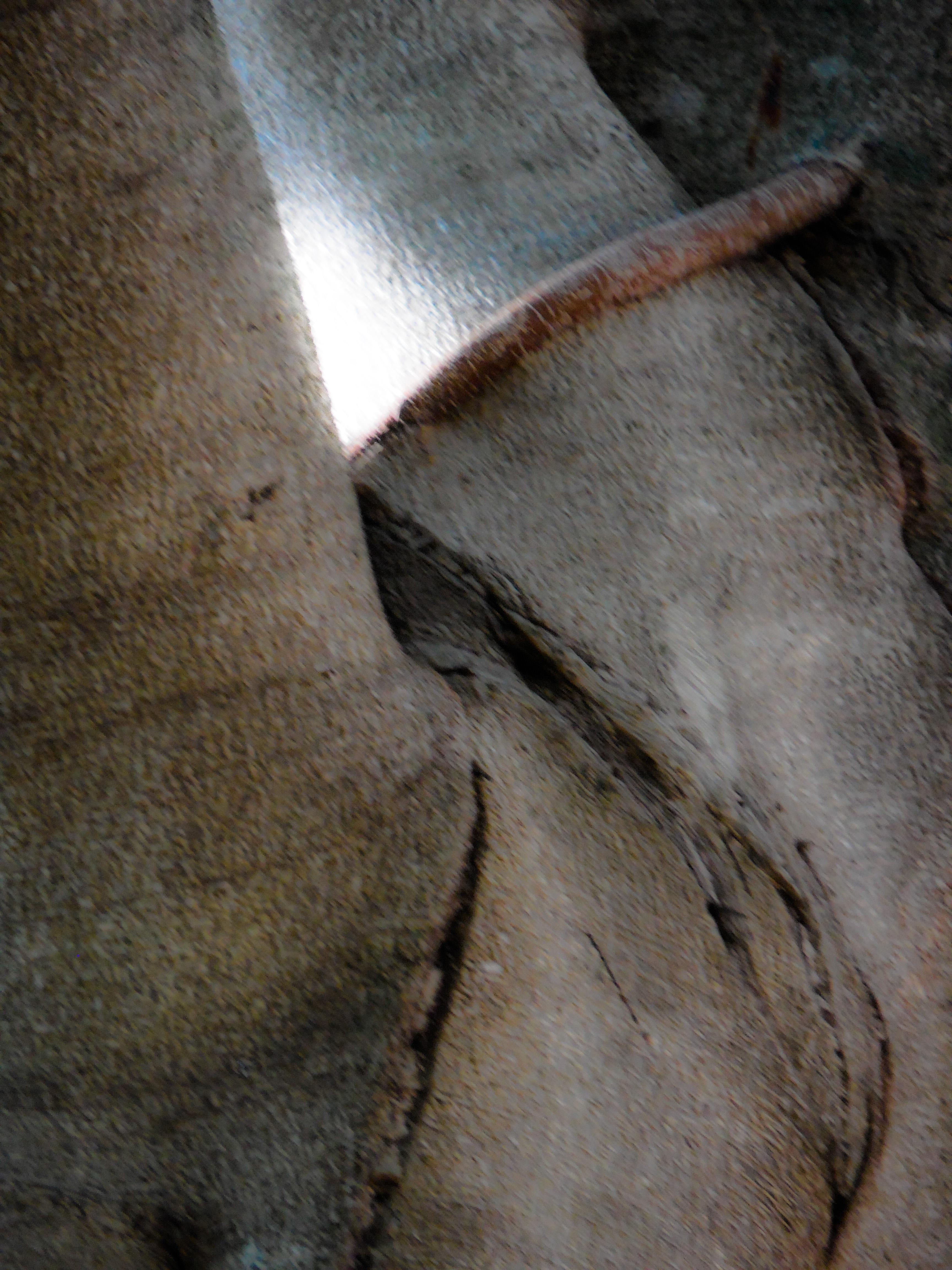 Banyon Body (Cover Photo)