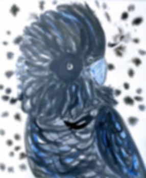 Rachel Carroll | BLACK COCKATOO | 40 x 5
