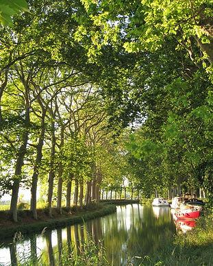 1200px-Canal_du_Midi_aug_2011.jpg
