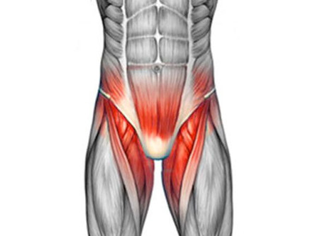What is a pulled Groin?