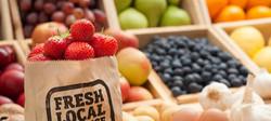 organic-produce-from-farmers-market_edit