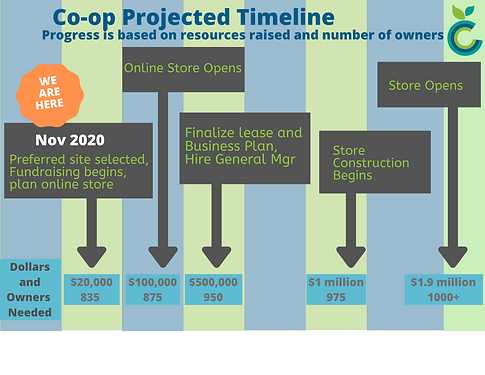 CCC Projected Timeline 111920.png