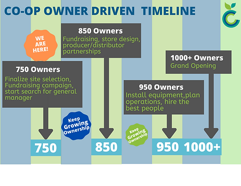 Ownership and Time based Timelines 2 X 2