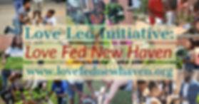 Love Fed Land 2.jpg