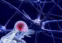 neurons-3743011_1920 (1).jpg