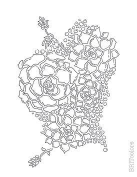 succulent Garden coloring page