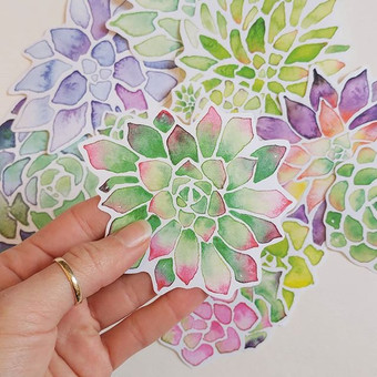 Succulent stickers party!!! 🎉🎉🎉_New j