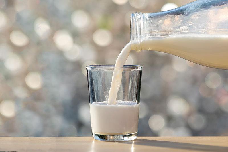 dairy3.jpg