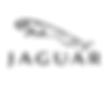 Jaguar-Logo-Vector-Free-Download.png
