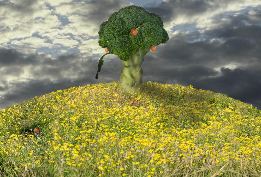 Brapple Tree