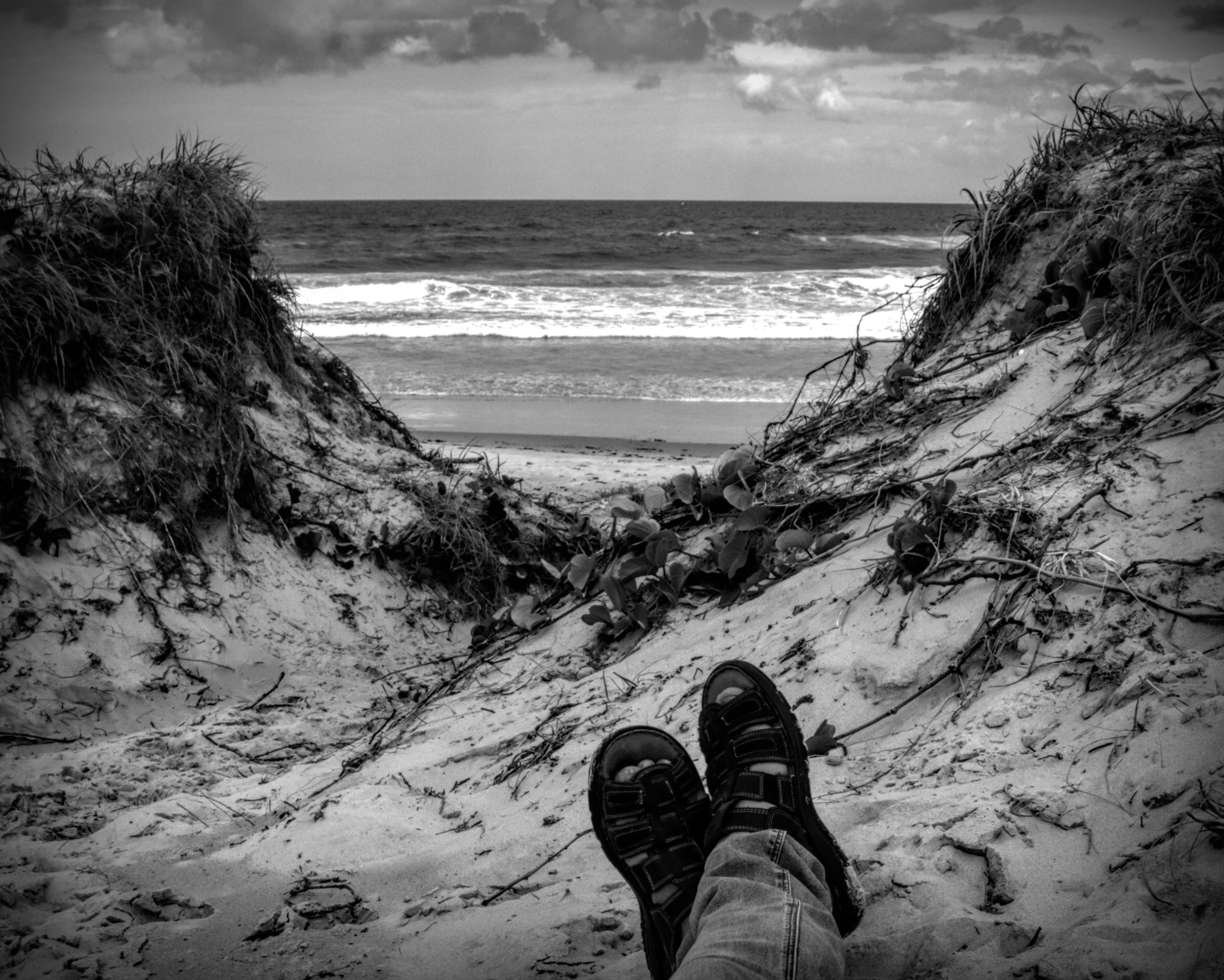 Beach Recluse