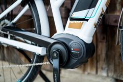 Scott E- Bike