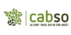 Logo_CABSO_CMJN_EXE.png