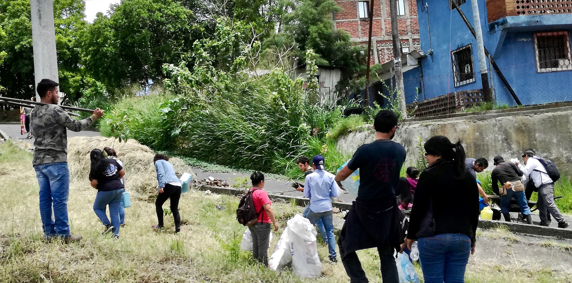 Actividad de Reforestación #2