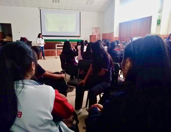 """Taller""""¿Qué significa ser mujeres jóvenes en Tacna?"""""""