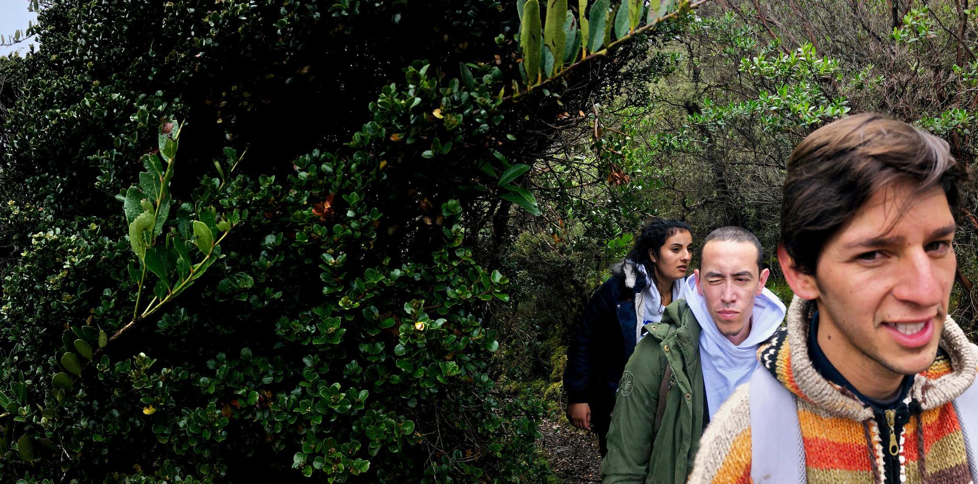 Caminata Ecológica