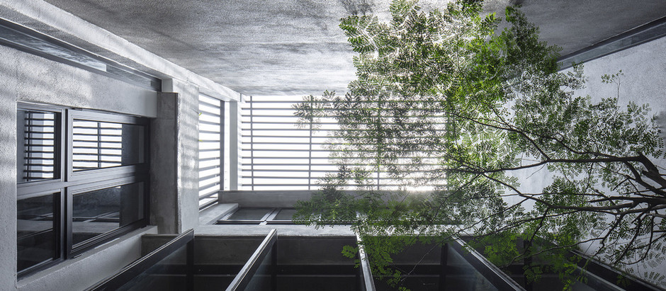 Outdoor that breaks into indoor. Light, sky, air and vegetation animate an industrial-chic house