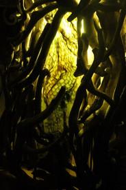 colonne-lumiere-jaune-detail.jpg