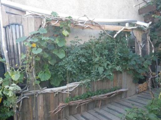 jardin.png