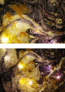 n8-detail-fleur-violet-jaune.jpg