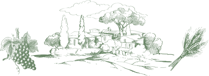 csm_illustrazione_f215f9a7fb.png