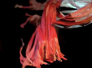 Series, ParaTerra: Wind in Shinto knots. Montreal (QC). Laboratoire Phenomena 3
