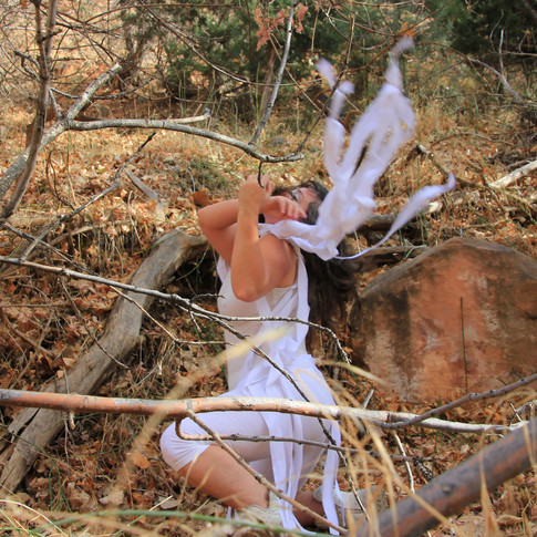 Series, Healing My Mother. Ma-ing: dance with deer, Dalidada (2017)