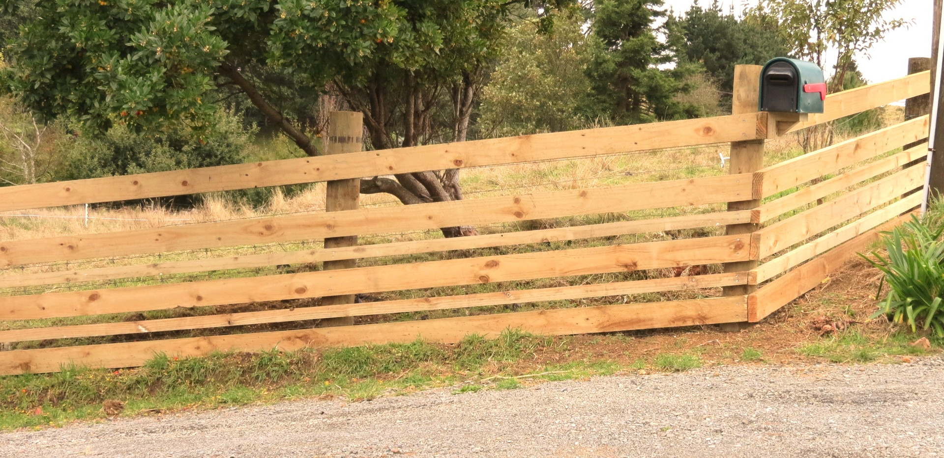Boundary fence_edited.jpg