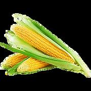 23-corn-png-image-thumb.png