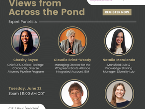 Diversity and Inclusion: Views from Across the Pond