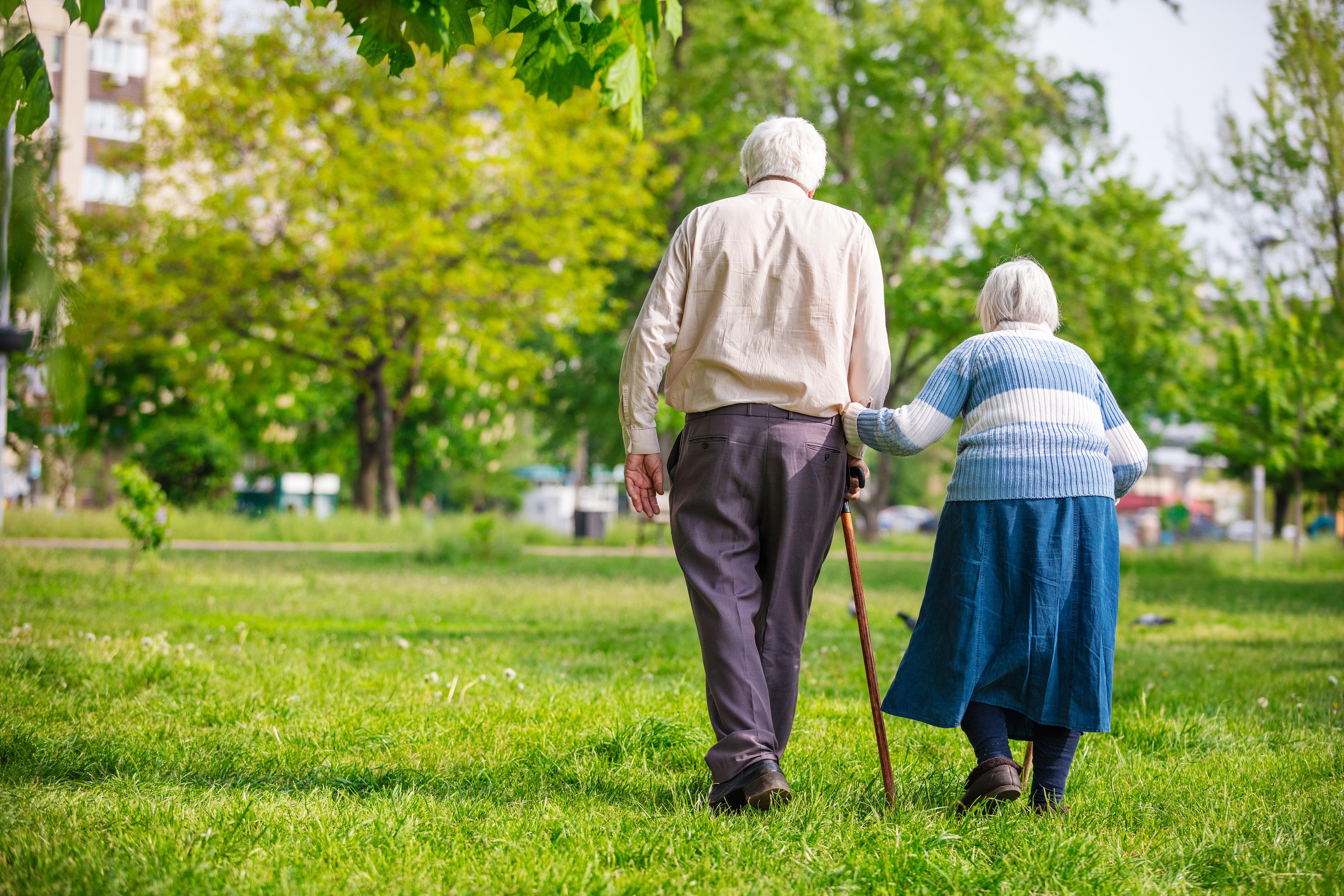 aged care recreation alliances