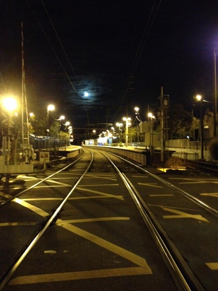 Surrey Hills station by night