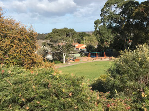 Getting to know 3127 - The revitalised Bluebell Hill Reserve
