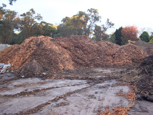 Don't let the State Government turn our trees into bark chips!