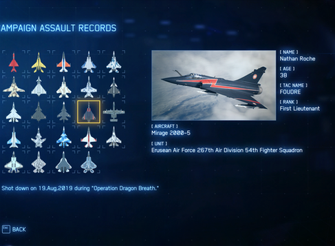 Thin Ace Combat 7 Assault Records