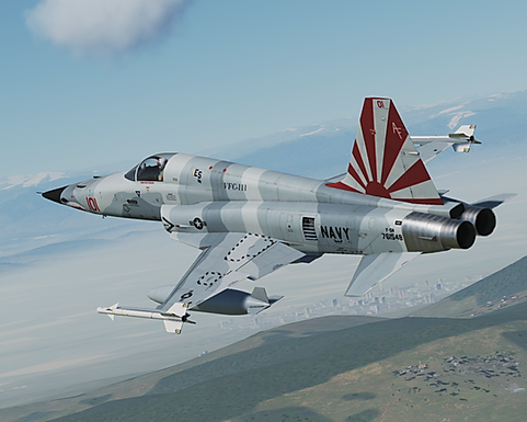 Review: DCS F-5E-3 Tiger II by Belsimtek