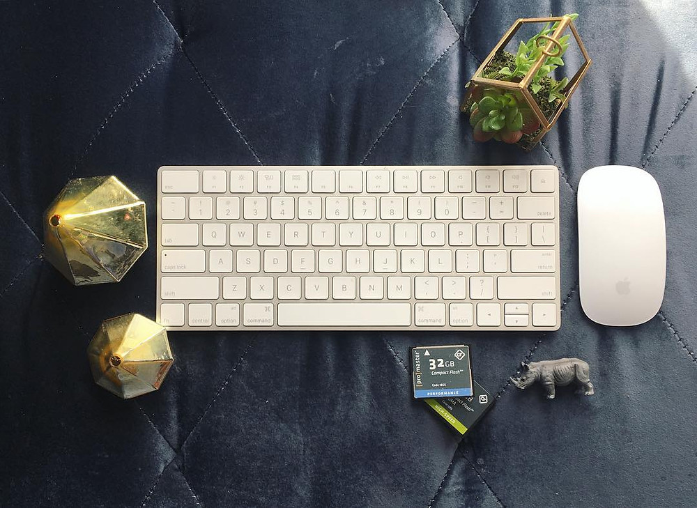 succulents, imac keyboard and wireless mouse, memory cards