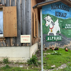 Day Three: Hanging out with the cows and goats on RusoAlp