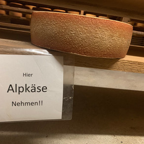 Arrival: Alp Steiners Hohberg