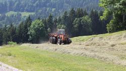 Traktor-heuen.jpeg