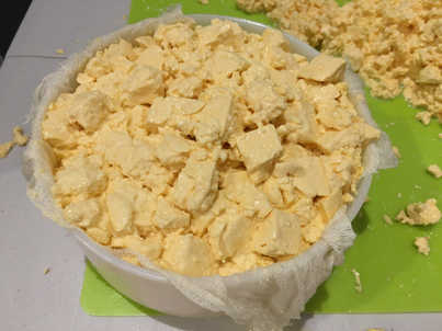 curd in the mould